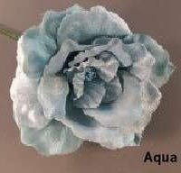Aqua Avalon Rose