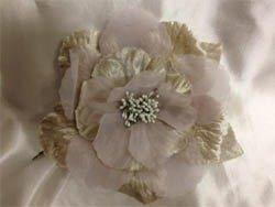 Blooming Beige