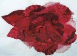 Blooming Red Burgundy