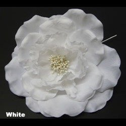 Cavalier White Swatch