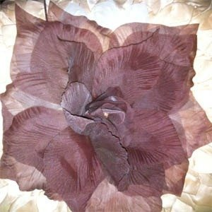 City Flower Brown
