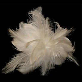 Coquille Hackle Corsage White