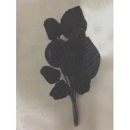 F VBerS Black