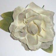 Old Fashion Beige Rose 2