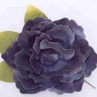 Old Fashion Black Shaded Rose