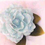 Old Fashion Ice Aqua Rose