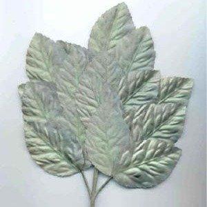 Polished Leaf Spray Green Variegated