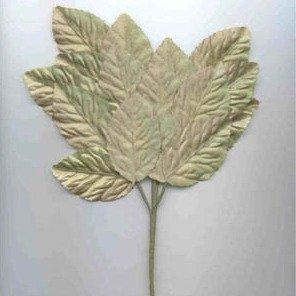 Polished Leaf Spray Pale Green Brown Shaded