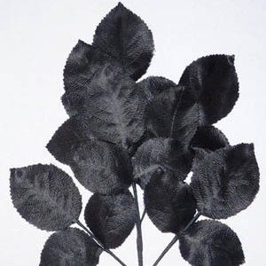 Polished Vintage Leaf Spray Black B