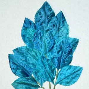 Polished Vintage Leaf Spray Teal Blue