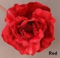 Red Avalon Rose