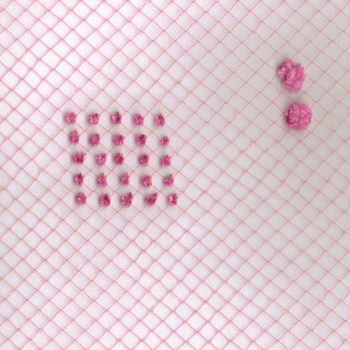 Strip 3101 Pink