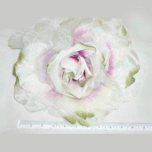 VL Rose Main