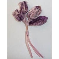 Velvet Buds Mulberry