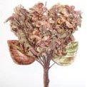 Velvet Lilacs Taupe