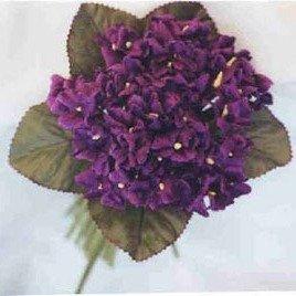 Velvet Violet Purple