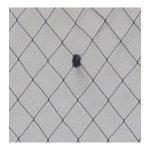 9″ Vintage Chenille Dot 3/8″ Diamond 1/16″ Dots On Edge