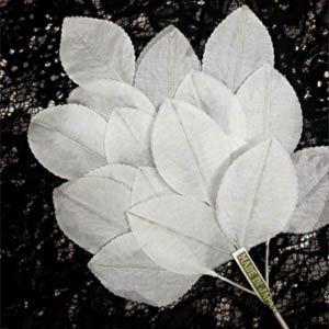 Vintage Silk Leaf Spray White A