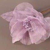 Whisper Rose Lilac