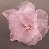 Whisper Rose Pink