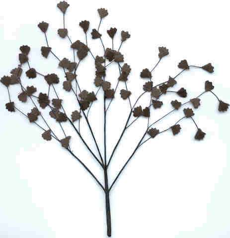 fernblack