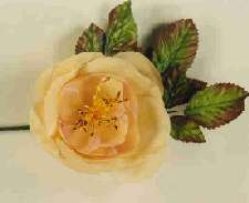 Silk Rose With Stamens & Variegated Leaves