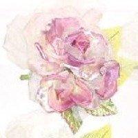 rose2budsRo